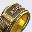http://www.trusar.com/imagenes/gold/aros/APAS-b.jpg